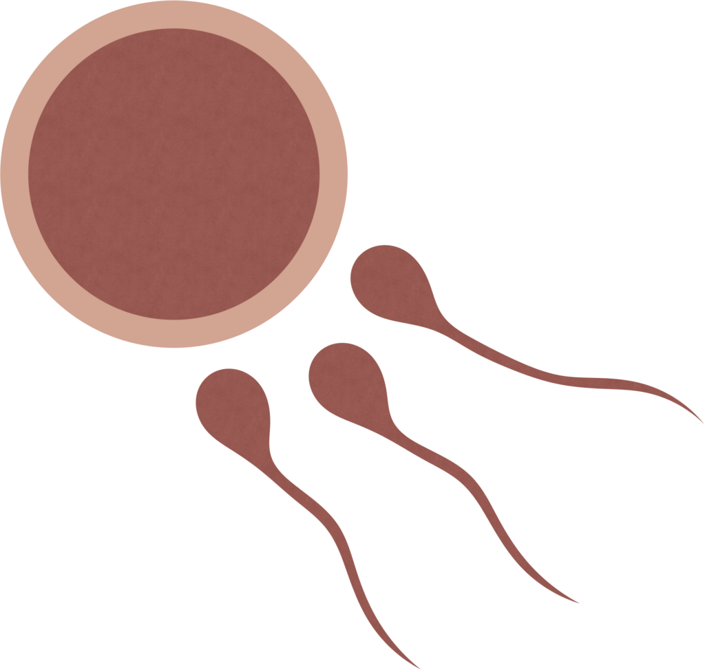 Fertilitetsbehandling med akupunktur